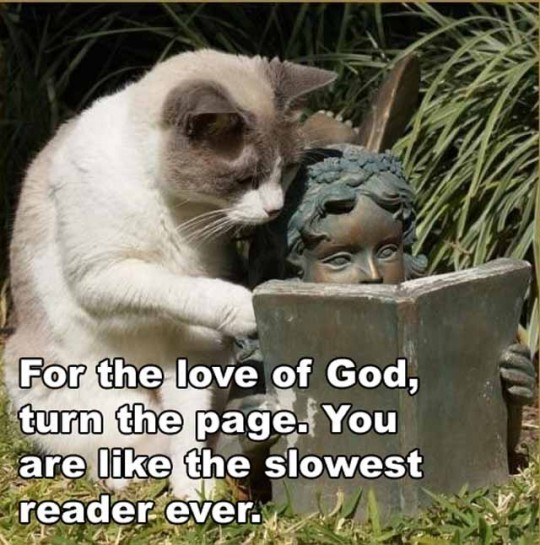 How fast do you read? :-)